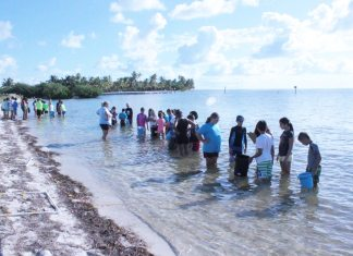 Kids investigate marine environment - A group of people standing next to a body of water - Leisure