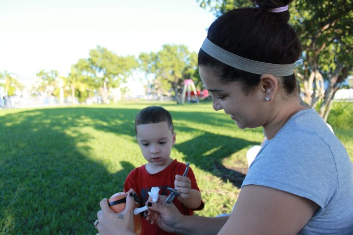 Young Key West mom looks to the future, is striving to succeed - A little boy that is standing in the grass - Boy
