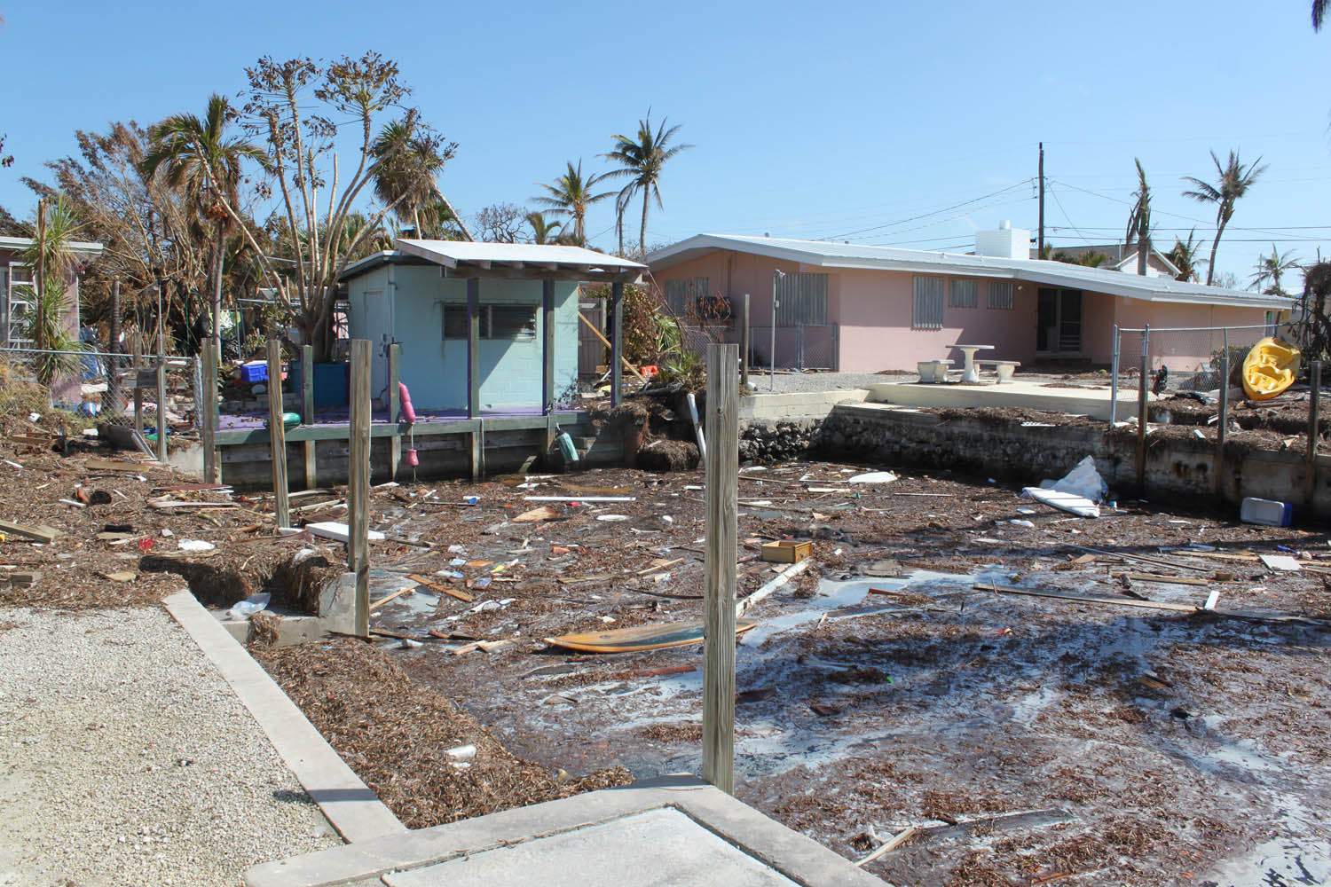 An Oceanside canal near 96th street is choked with debris. It smells.