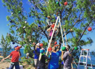 Elves light up Fred again - A group of people standing next to a tree - Seven Mile Bridge