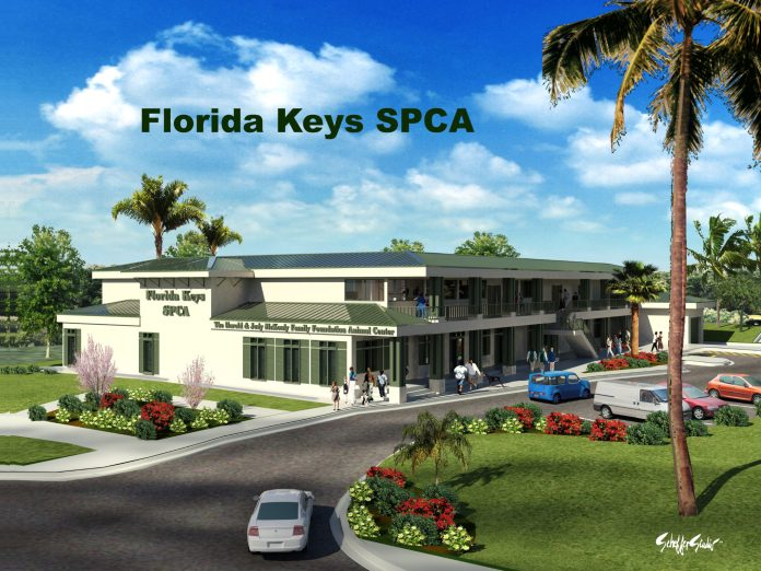 For The Love of Florida Keys SPCA Animals - A palm tree in front of a building - Florida Keys SPCA, Inc.