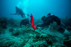- It's not all anchors and rope, Eric Billips attaches another lift bag to the remnants of what looks like a bait trap. There's a good chance this debris was brought to the reef by Hurricane Irma.