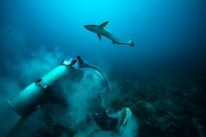- A curious Remora swims around a cleanup diver as he pulls his treasure from the bottom.