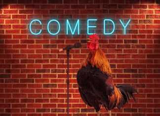 NOTABLE COMICS COMING TO KEY WEST - A person standing in front of a brick wall - Rooster
