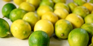 Key Lime tree planting initiative takes root in Key West - A bunch of fruit sitting on a table - Key lime pie