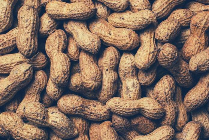 The Bassinet Telegraph – Infant Feeding and Food Allergies - A pile of fruit - Boiled peanuts