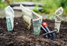 LONG-TERM RECOVERY – New funding sources opening up - Pexels