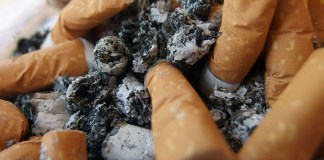 Bringing awareness to cigarette littering - A close up of food - Ashtray