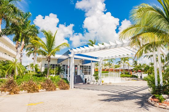 - A palm tree in front of a building - Skipjack Resort & Marina
