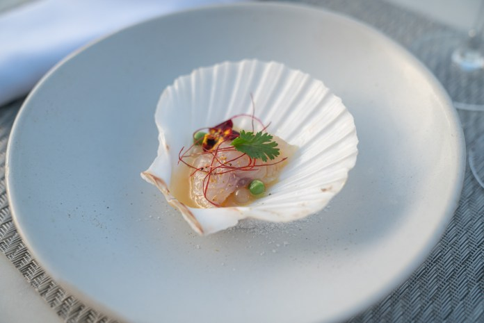CATCH AND DINE – Program shows mindful harvesting, food preparation - A piece of cake sitting on top of a white plate - Crudo
