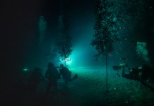 WORTH THE WAIT – CRF corals spawn later than predicted - A man swimming in the dark - Free-diving