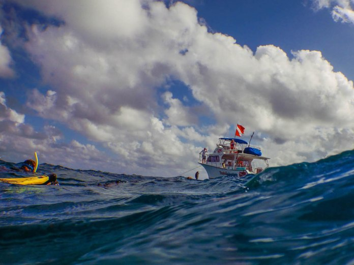 NOAA Launches $97 Million Targeted Mission to Save Florida Reef Tract - A group of people riding on the back of a boat in the water - Fishing vessel