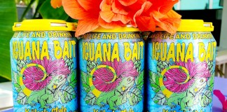 Iguana Bait hits the Publix shelves - A vase filled with pink flowers on a table - Florida Keys Brewing Co
