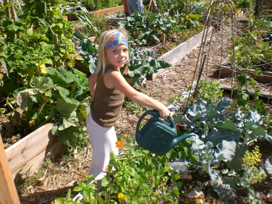 Madison Zintsmaster, 6, is one of the many active participants in GLEE's Community Garden Key West