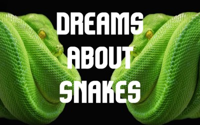 Dreams About Snakes: Primal Fear