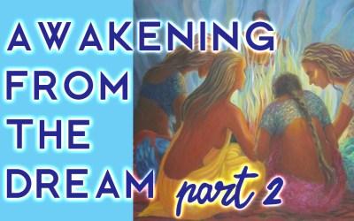 Awakening from the Dream, pt. 2
