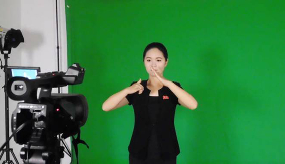 Agencia de Intercambio Económico y Cultural para Sordomudos y Ciegos de Corea