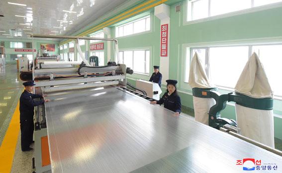 Nueva fábrica de materiales forestales.