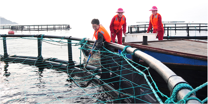 Protección de recursos marinos.