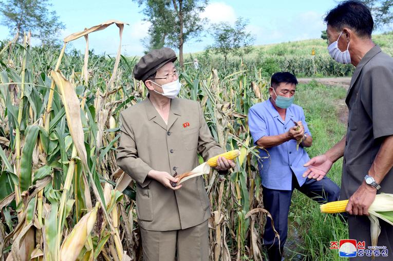 Vicepresidentes recorren granjas en Hwanghae del Sur