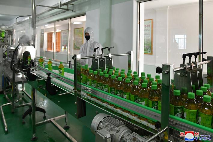 Inaugurada fábrica de té.