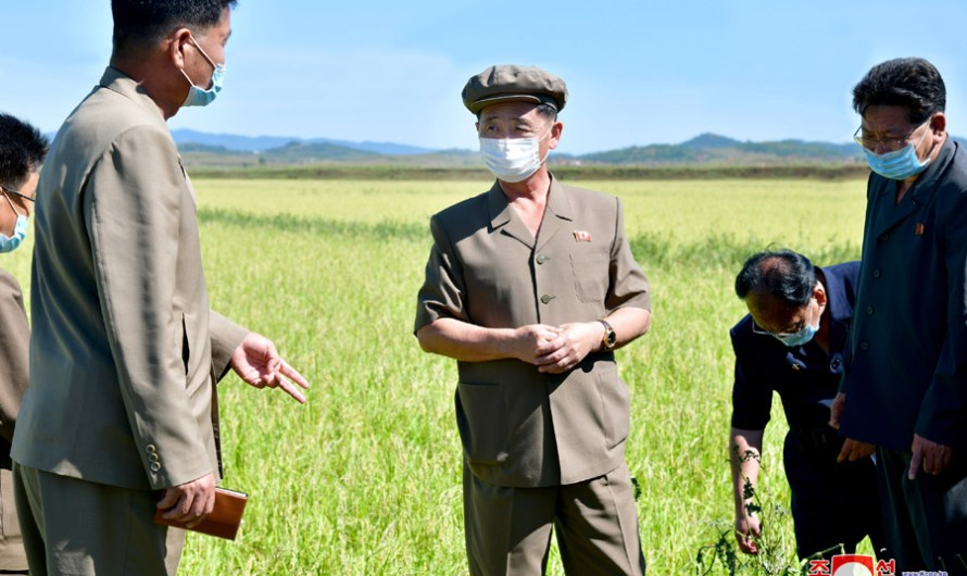 Kim Tok Hun supervisa varios sectores de la economía.