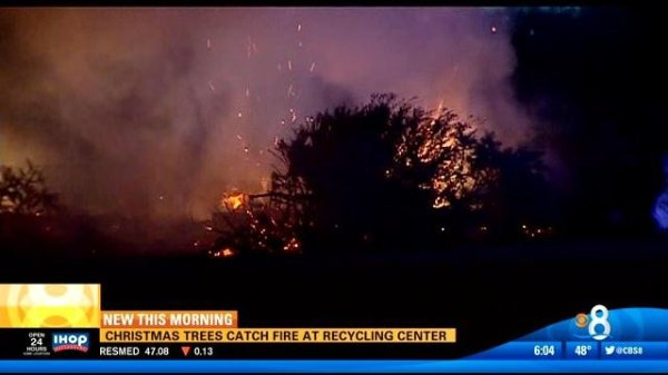 Christmas trees catch fire at recycling center - CBS News ...