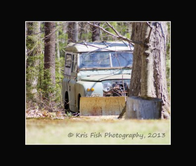 """Land Rover """"parked"""" in the woods"""