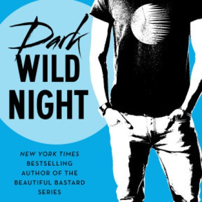 In Review: Dark Wild Night (Wild Seasons #3) by Christina Lauren