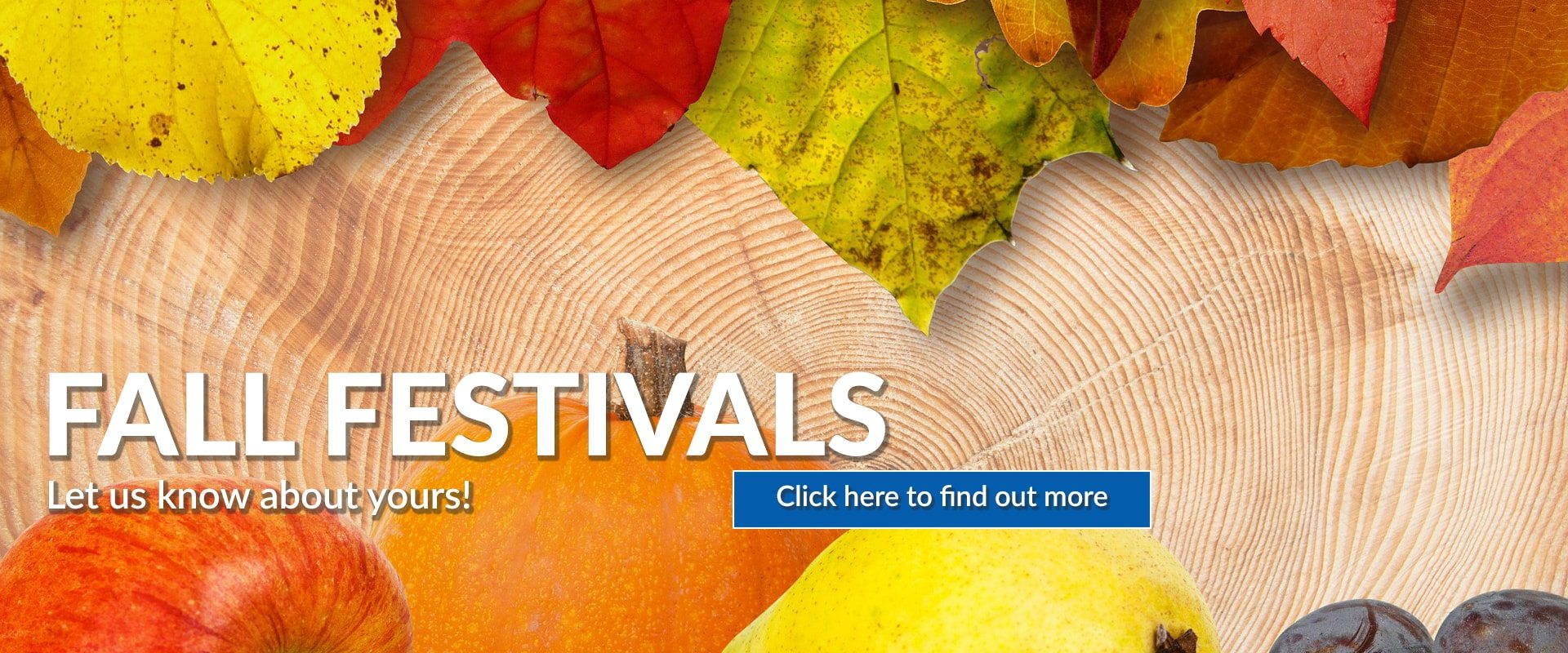 91.3 KGLY Fall Festivals Road Trips East Texas