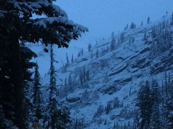 Missing Seattle skier found alive on Mount Baker | 790 KGMI