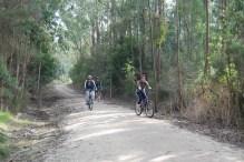 Leongatha to Koonwarra