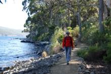 The Cape Hauy trail near Fortescue Bay