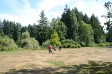 Park where LARP and the Real Girl was filmed.
