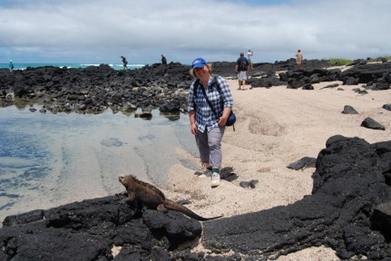 Seeing the wildlife on Galapagos Islands