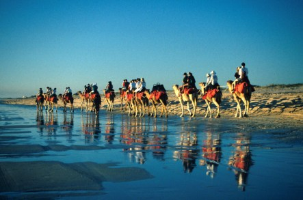 Seeing the camels on Cable Beach in Broome