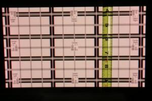 12-inch Diag Celluon_8572