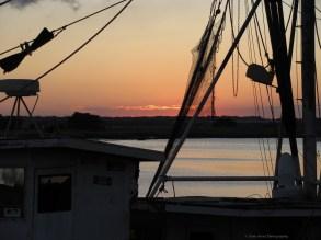 The Shrimp boats