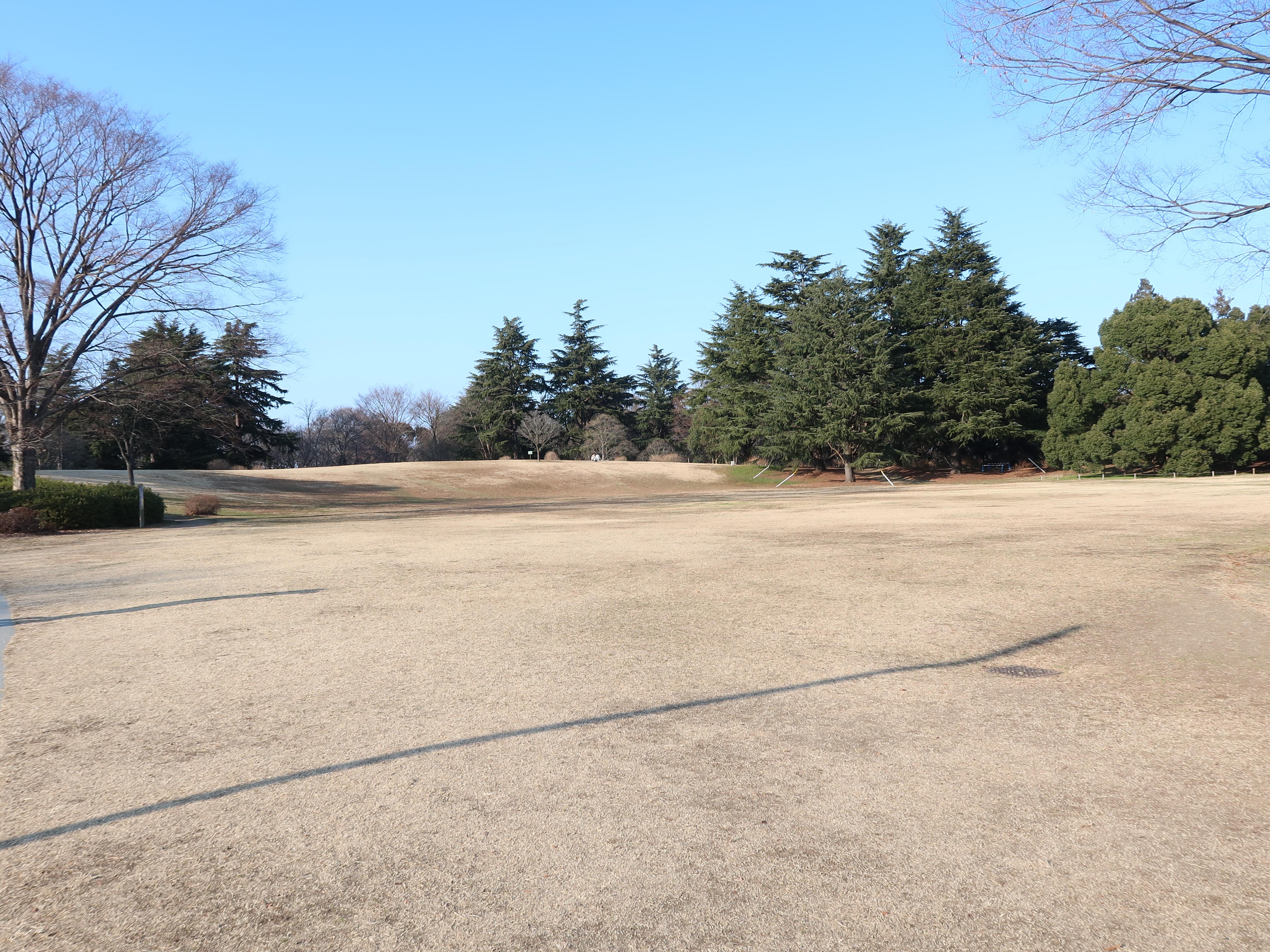 昭和記念公園 ふれあい広場