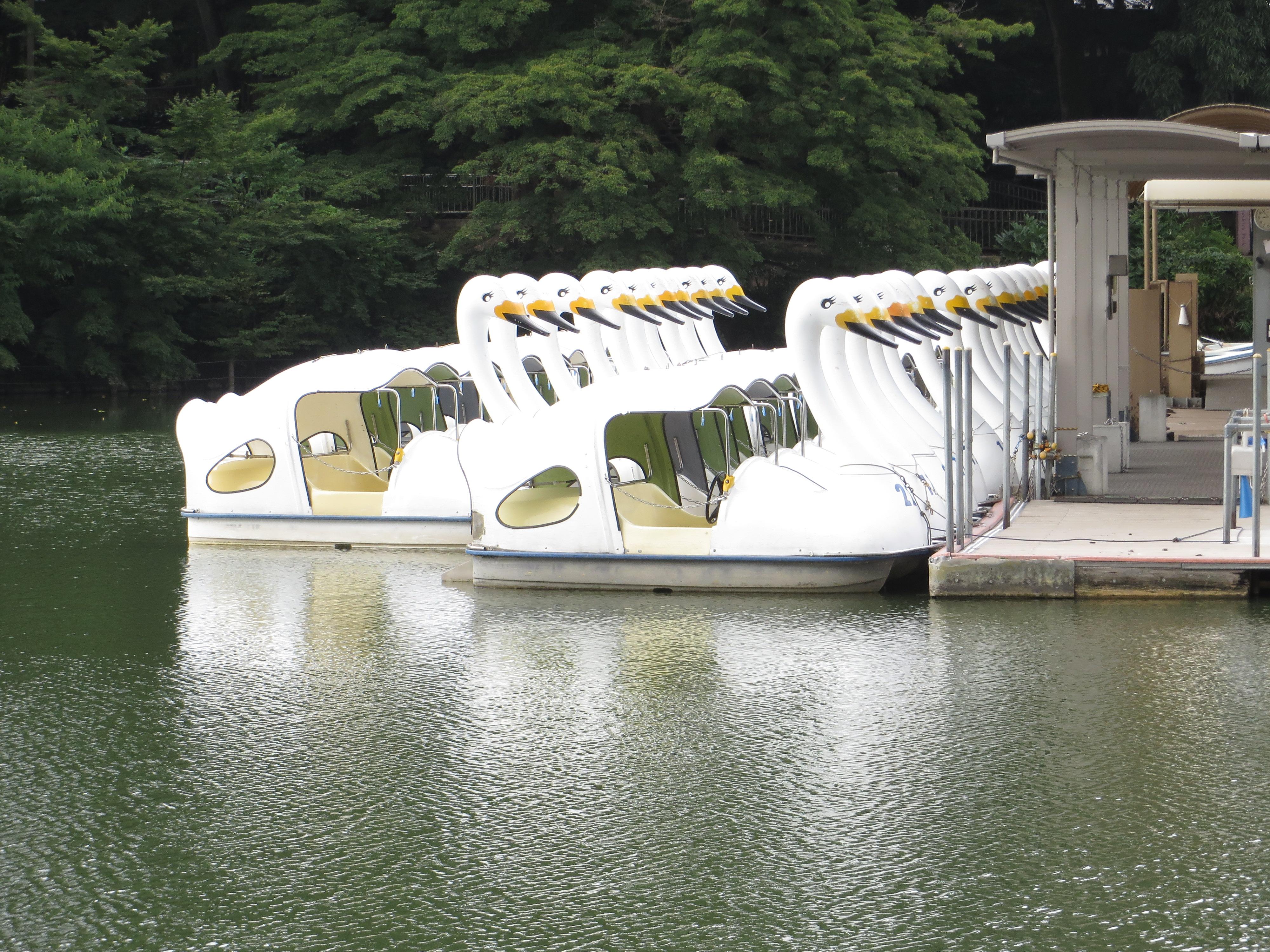 出番を待つ井の頭池のスワンボート