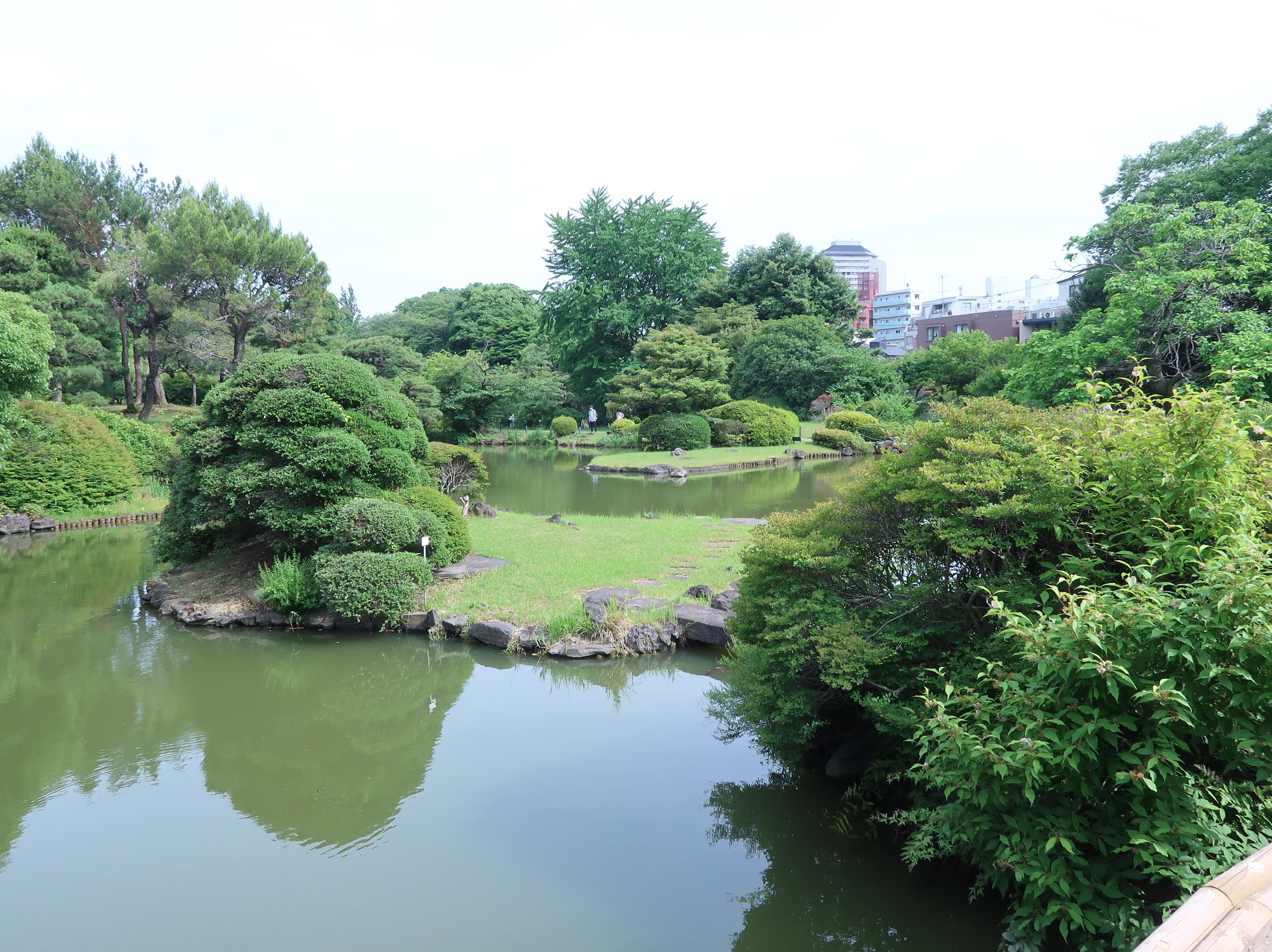 小石川植物園 日本庭園