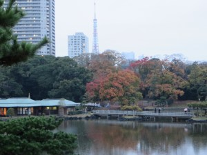 Pond and Tokyo tower