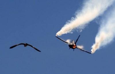 US, militants, target, attack, aircraft, Pakistan