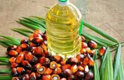 Palm oil, Malaysia, export, Pakistan