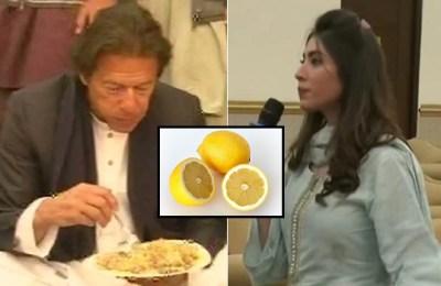 Hina Butt, Imran Khan, inflation Pakistan, Hina Pervez Butt