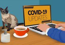 mp corona update