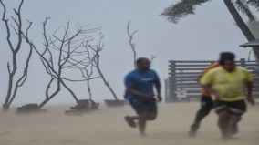 Scientist also surprised, warning of two hurricanes colliding with Australia, 167 killed in Indonesia