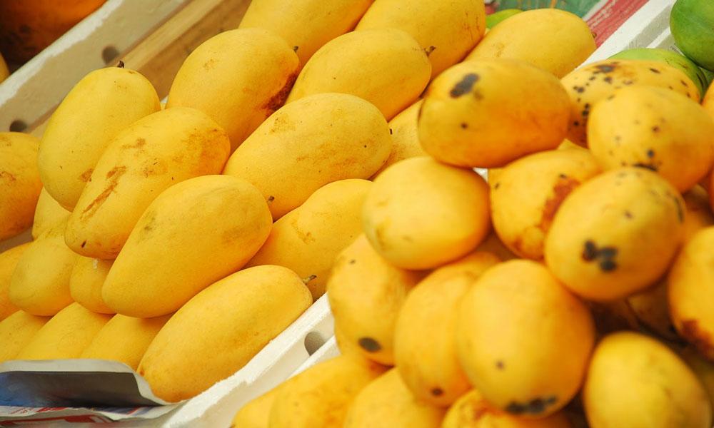 Pakistani Mangoes Arrives in UAE after Delay of Some Weeks - Khaleej