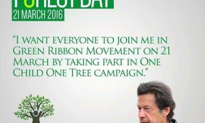 One Tree One Life
