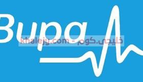 بوبا للتأمين وظائف ادارية لحديثي التخرج في الرياض وجدة